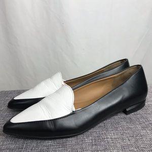 Everlane The Modern Point Black White Leather Flat